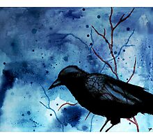 Crow Veins Photographic Print