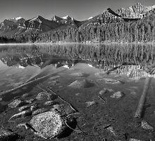 Tranquil Lake by JamesA1