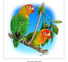 LILIANS LOVEBIRD 2 by DilettantO