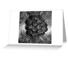 Radishes in a colander - monochrome Greeting Card