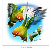 LILIANS LOVEBIRD 3 by DilettantO