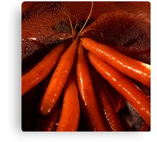 Tasty moist carrots in a colander Canvas Print