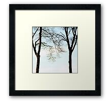Two beech trees in spring Framed Print