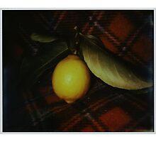 fallen fruit on fleece Photographic Print