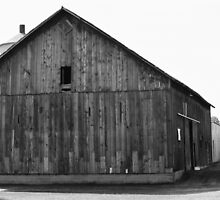 Grandpa's Old Barn by Emily Rose
