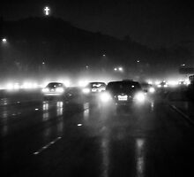 LA Freeway by Robert Larson