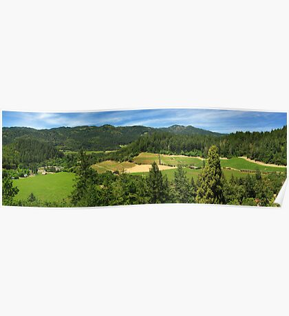 Wine Country Panorama Poster