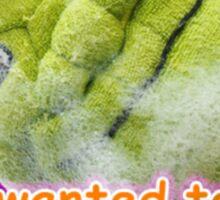 Shrek Tumblr Sticker