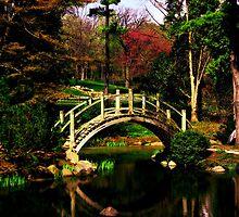 Batavia Japanese Gardens  by SavagePhotos