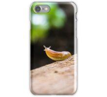 Garden Survey  iPhone Case/Skin