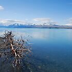 Glacial Lake near Mt Cook, NZ by Catherine Davis