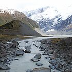 Glacial Lake, Mt Cook, NZ by Catherine Davis