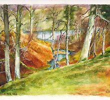 Beside the Dee River in Aberdeenshire Scotland by Dai Wynn