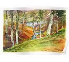 Beside the Dee River in Aberdeenshire Scotland Poster