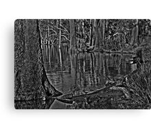 wood on water Canvas Print