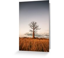 Kimberley Boab Tree Greeting Card