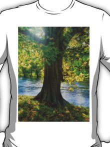 Shades of Autumn T-Shirt
