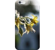 Tomato flowers iPhone Case/Skin