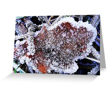 Red fall leaf with white frost Greeting Card