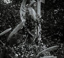 Angel by LaniPix