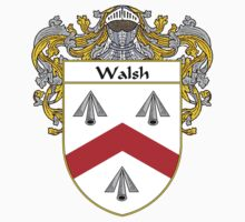 Walsh Coat of Arms / Walsh Family Crest by William Martin