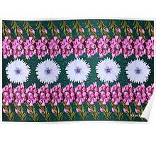 White Pink Flowers Boronia Poster