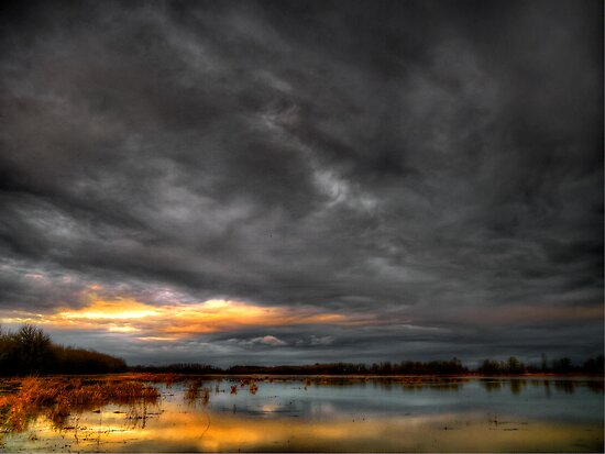 Big Sky At Finley Refuge by Charles & Patricia   Harkins ~ Picture Oregon