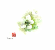 Green apple watercolor painting bloom flower white yellow blossom by Johana Szmerdt
