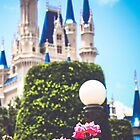 Magic Kingdom in the Spring by Diana Kelly