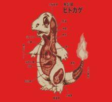 Charmander Pokemon Anatomy Japanese Shirt by cupcakewaffles