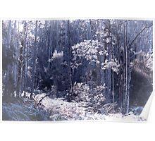 Bushland (Digitally Aged) Poster