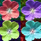 Hardy Geranium Multicolor Girly Flower Pop Art by DevFocus