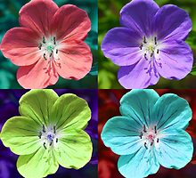 Hardy Geranium Multicolor Girly Flower Pop Art by Loura Lawrence