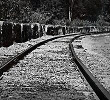 Following the train tracks by Scott Mitchell