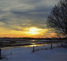 Country Sunset  by keleka656