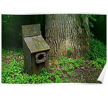 Abandoned birdhouse Poster