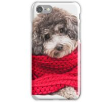 toy poodle iPhone Case/Skin