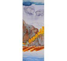 Colorado Aspen Landscape Photographic Print