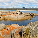 Bay of fires , Tasmania by Glen Johnson