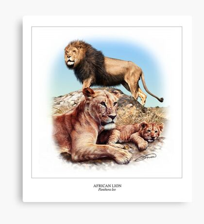 AFRICAN LION 3 Canvas Print