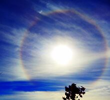 HALO AROUND THE SUN by Sandra  Aguirre