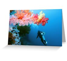 Soft Coral Capital Greeting Card