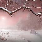 Pink Winter by Igor Zenin