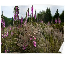 Just Blend In ~ Wildflowers ~ Poster