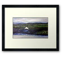 Swan over the river no2 Framed Print