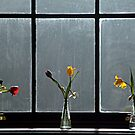 Flowers on a window ledge. by Billlee