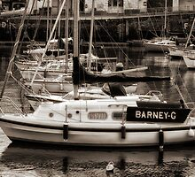 Barney G at Paignton Harbour by Jay Lethbridge