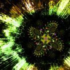 Cosmic Solar Flower Fern Flare by Shawn Dall