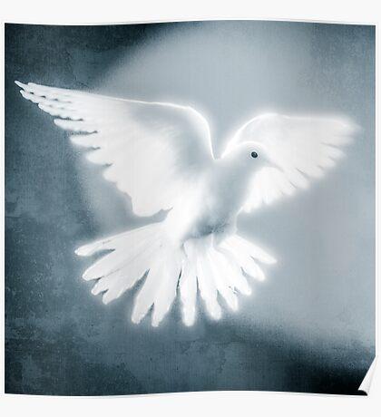 Dove in Flight Blue Poster