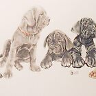 Neapolitan Mastiff Puppies by BarbBarcikKeith